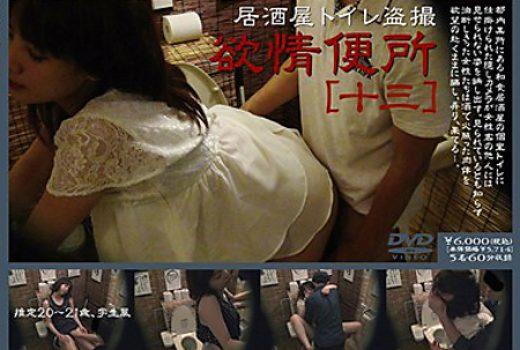 居酒屋トイレ盗撮 欲情便所 [十三]