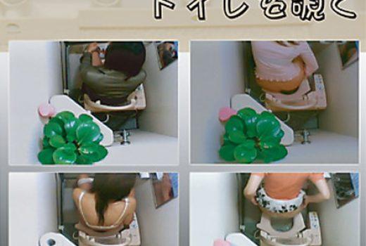 ピンホールカメラでトイレを覗く